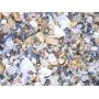 Mikroskop digitálny DeltaOptical Smart 5MP PRO 20-300x